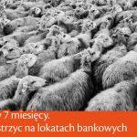 Wyniki planów systematycznego oszczędzania (7)